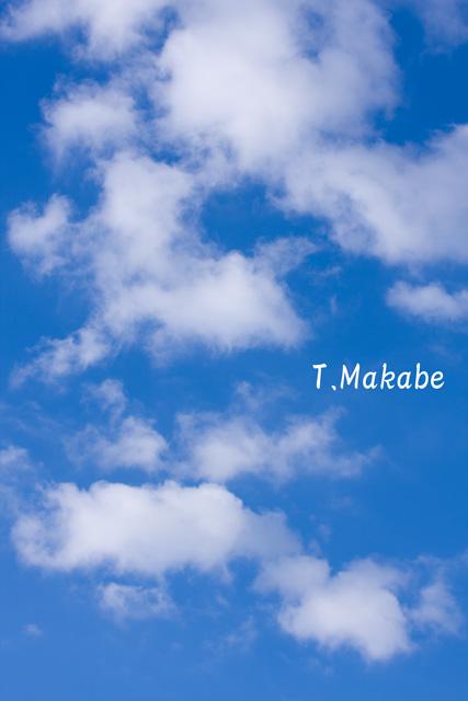三ッ池公園11月の空
