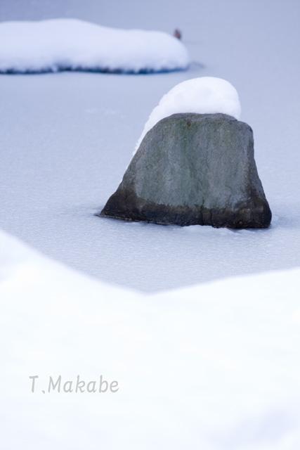 三ッ池公園の積雪