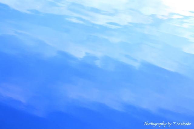 1648-1★三ツ池公園の水面.JPG