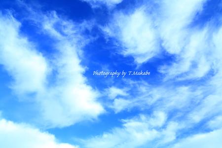 1868-1★三ッ池公園10月の青空.JPG